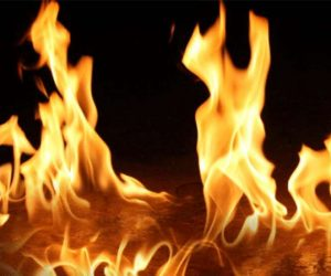 Temizlik için ateş yaktı, ağaçlar kül oldu!