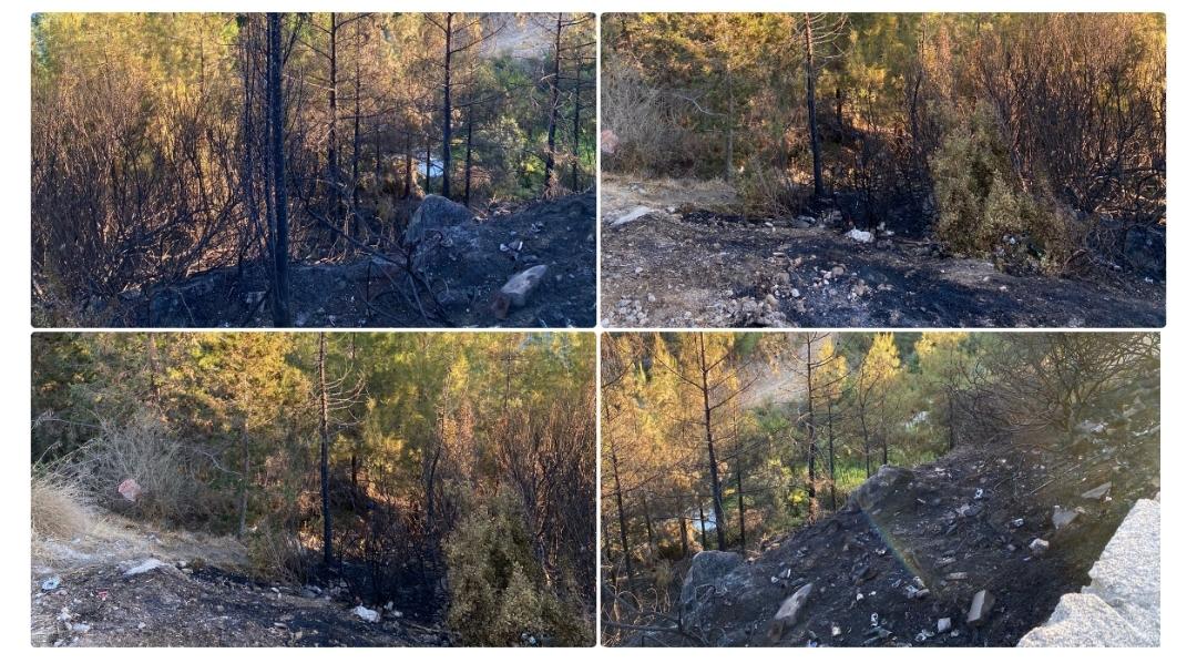 Çatalköy'de yangın