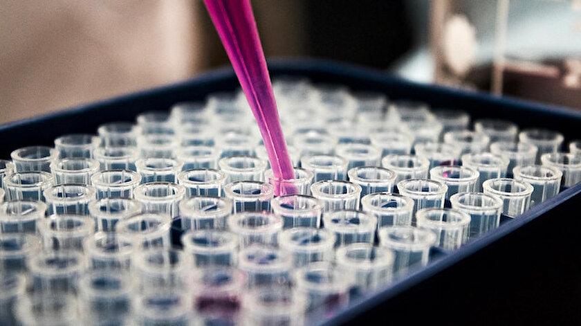 Koronavirüse karşı antikor kokteyli onaylanıyor