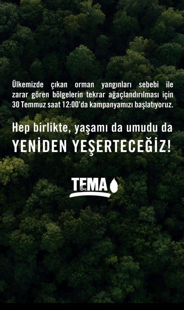 TEMA Vakfı bugün saat 12:00'de kampanya başlatıyor